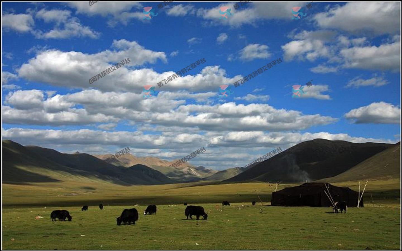 金川·色达·德格·桃花沟·拉萨·羊湖10天 来过,这一生便不曾离开